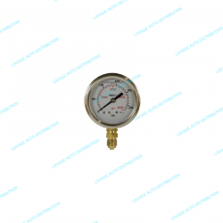 Manomètre Radial 0-250 bar